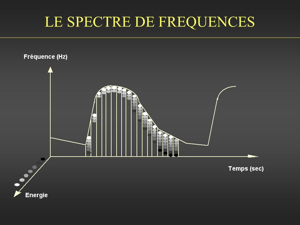LE SPECTRE DE FREQUENCES