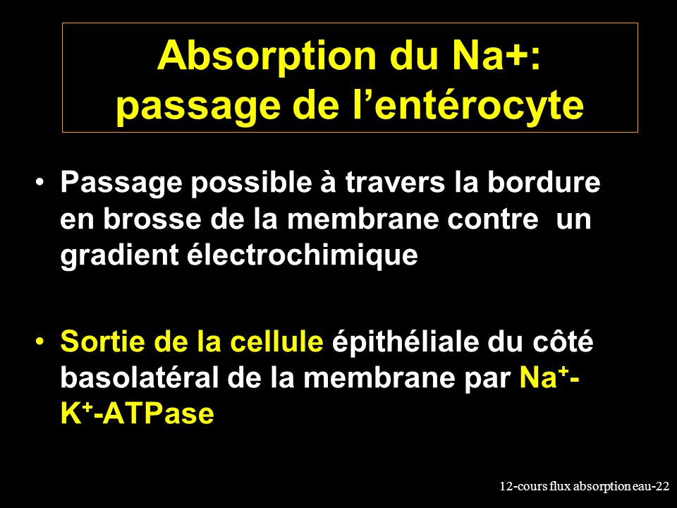 Absorption du Na+: passage de l'entérocyte