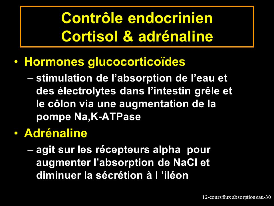 Contrôle endocrinien Cortisol & adrénaline