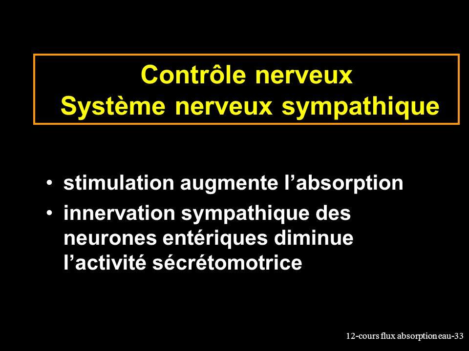 Contrôle nerveux Système nerveux sympathique