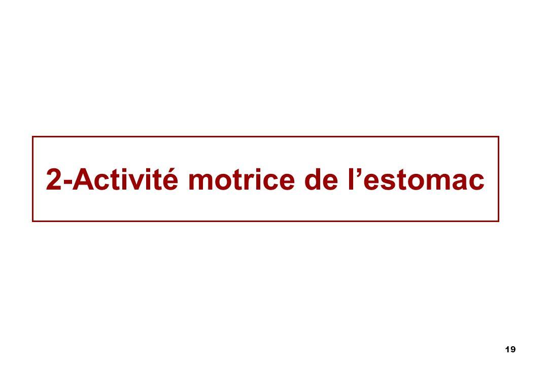 2-Activité motrice de l'estomac