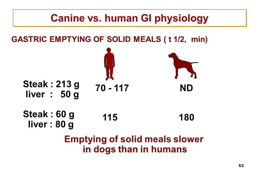 Canine vs. human GI physiology