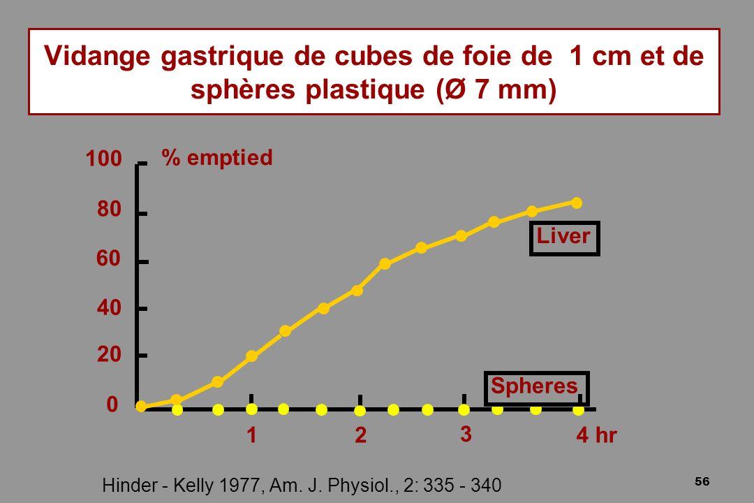 Vidange gastrique de cubes de foie de 1 cm et de sphères plastique (Ø 7 mm)