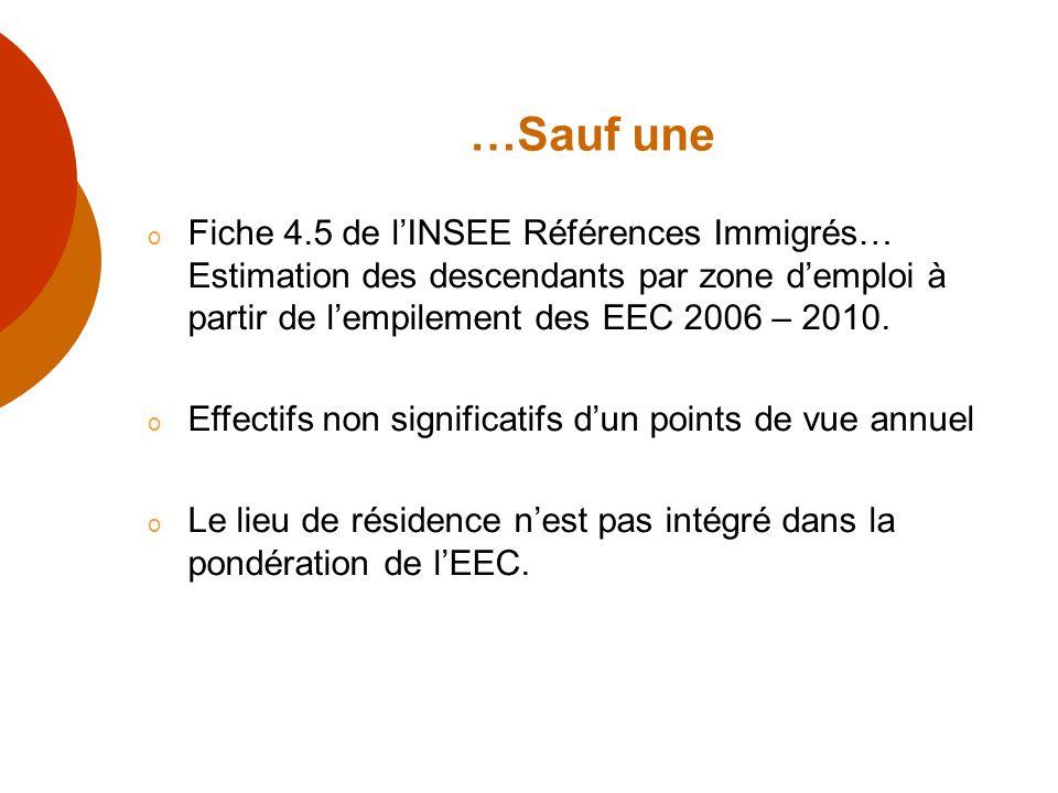 …Sauf une Fiche 4.5 de l'INSEE Références Immigrés… Estimation des descendants par zone d'emploi à partir de l'empilement des EEC 2006 – 2010.