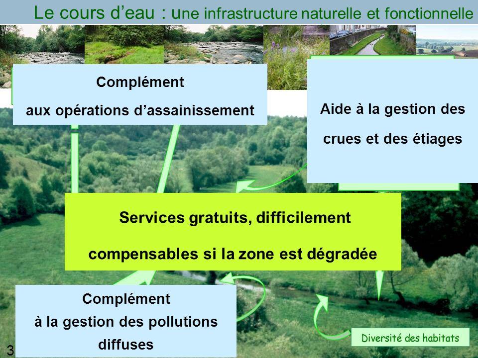 Le cours d'eau : une infrastructure naturelle et fonctionnelle