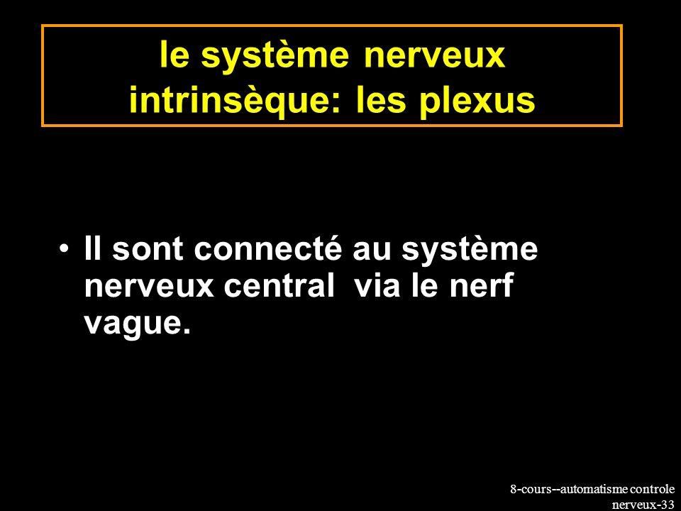 le système nerveux intrinsèque: les plexus