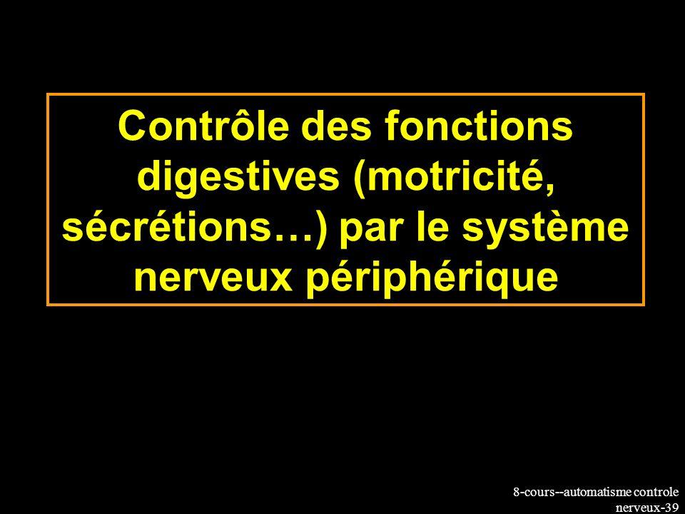 Contrôle des fonctions digestives (motricité, sécrétions…) par le système nerveux périphérique