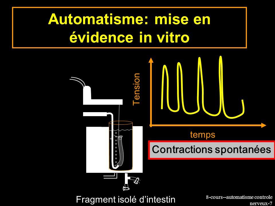 Automatisme: mise en évidence in vitro