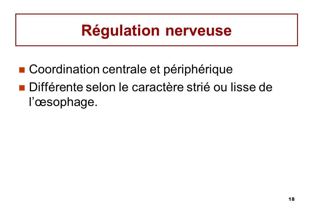 Régulation nerveuse Coordination centrale et périphérique