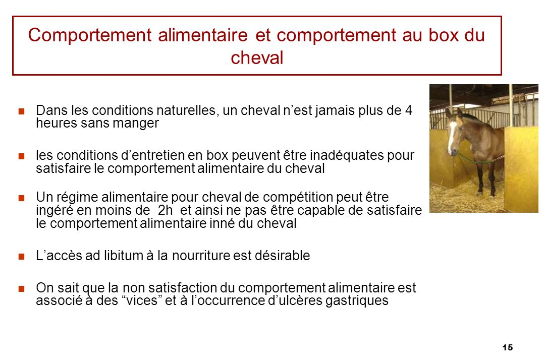 Comportement alimentaire et comportement au box du cheval