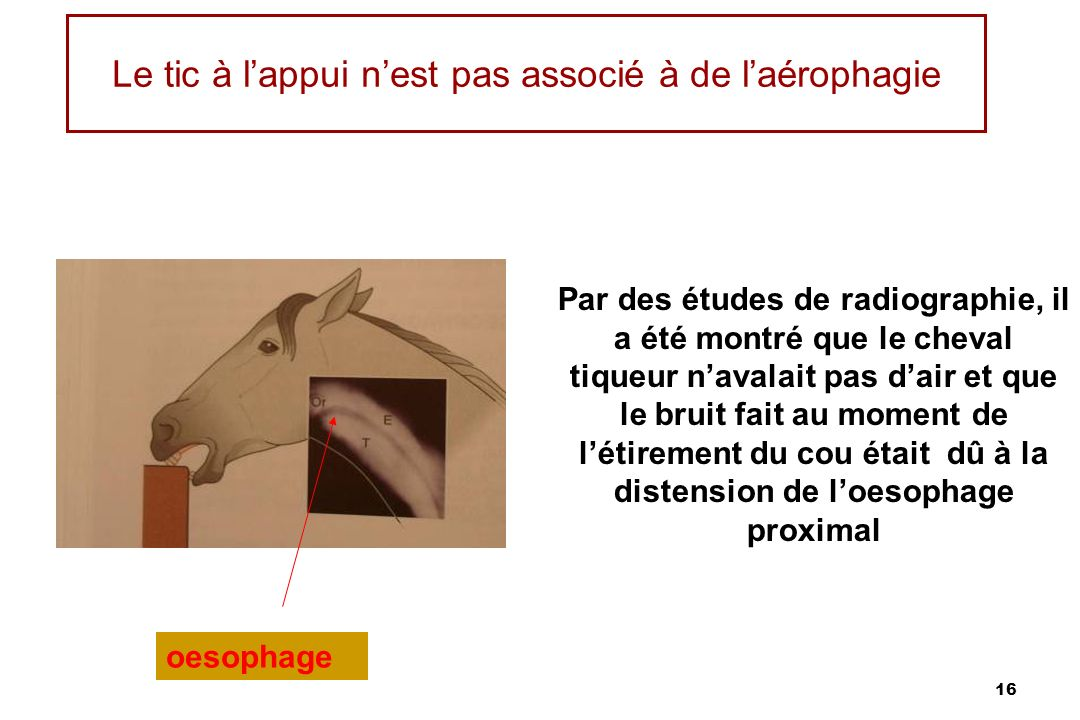 Le tic à l'appui n'est pas associé à de l'aérophagie