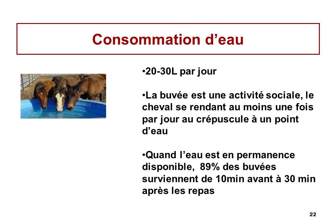 Consommation d'eau 20-30L par jour