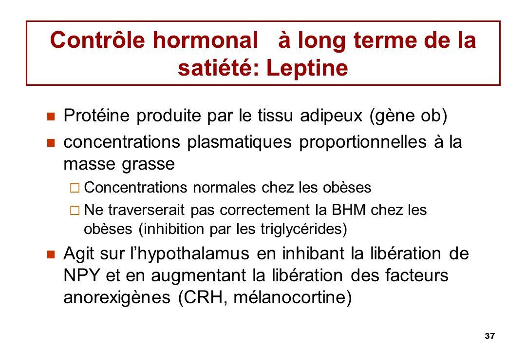 Contrôle hormonal à long terme de la satiété: Leptine