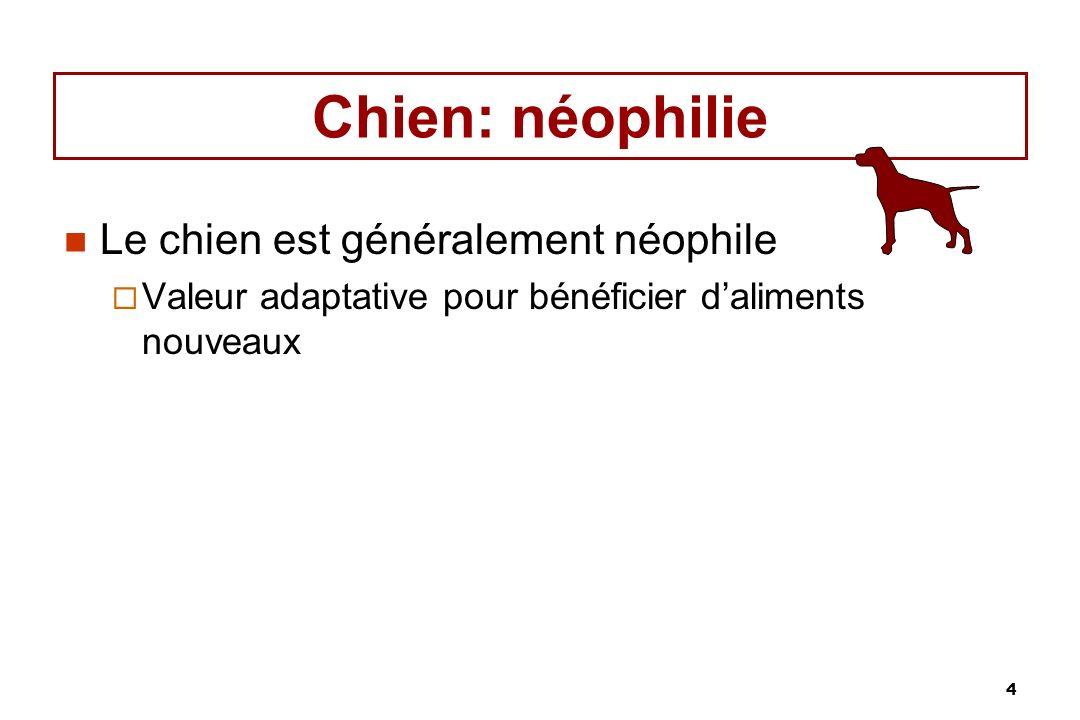 Chien: néophilie Le chien est généralement néophile