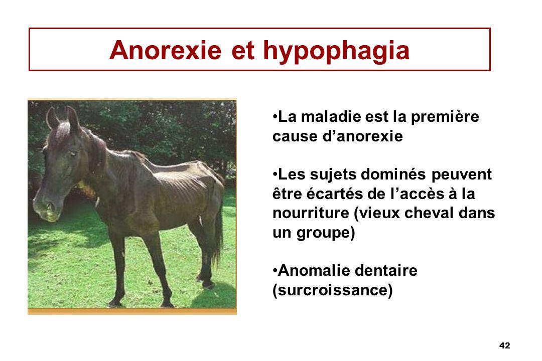 Anorexie et hypophagia