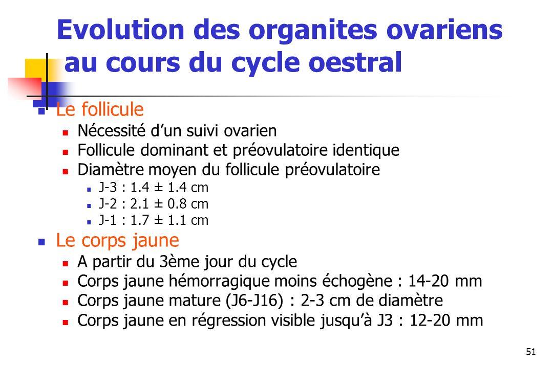 Evolution des organites ovariens au cours du cycle oestral