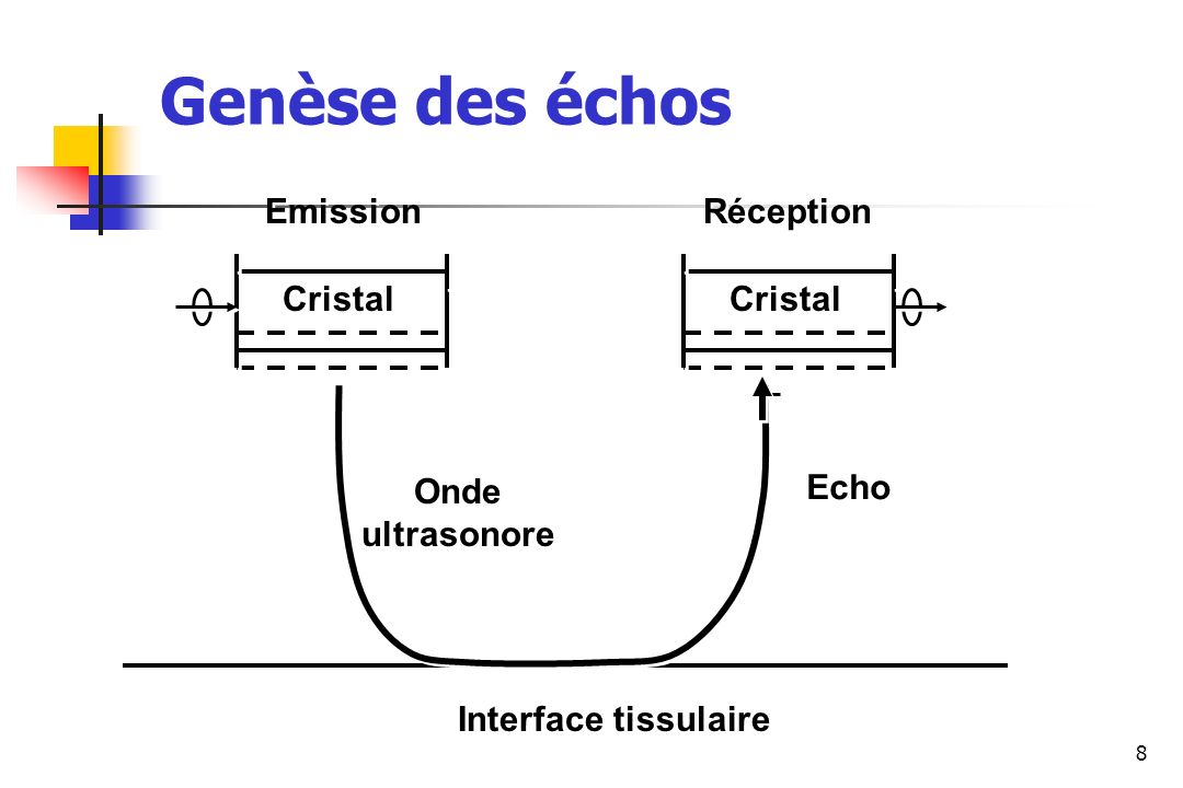 Genèse des échos Emission Réception Cristal Cristal Onde ultrasonore
