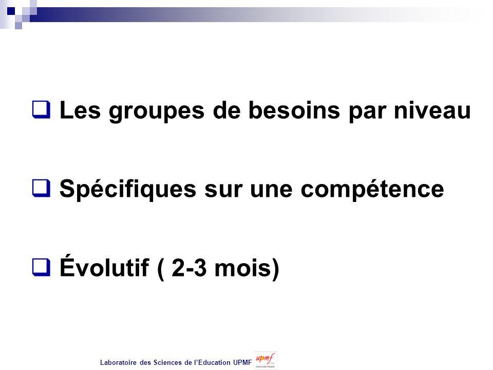 Les groupes de besoins par niveau Spécifiques sur une compétence