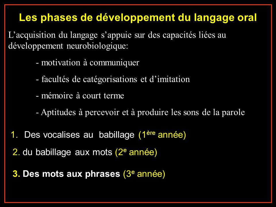 Les phases de développement du langage oral