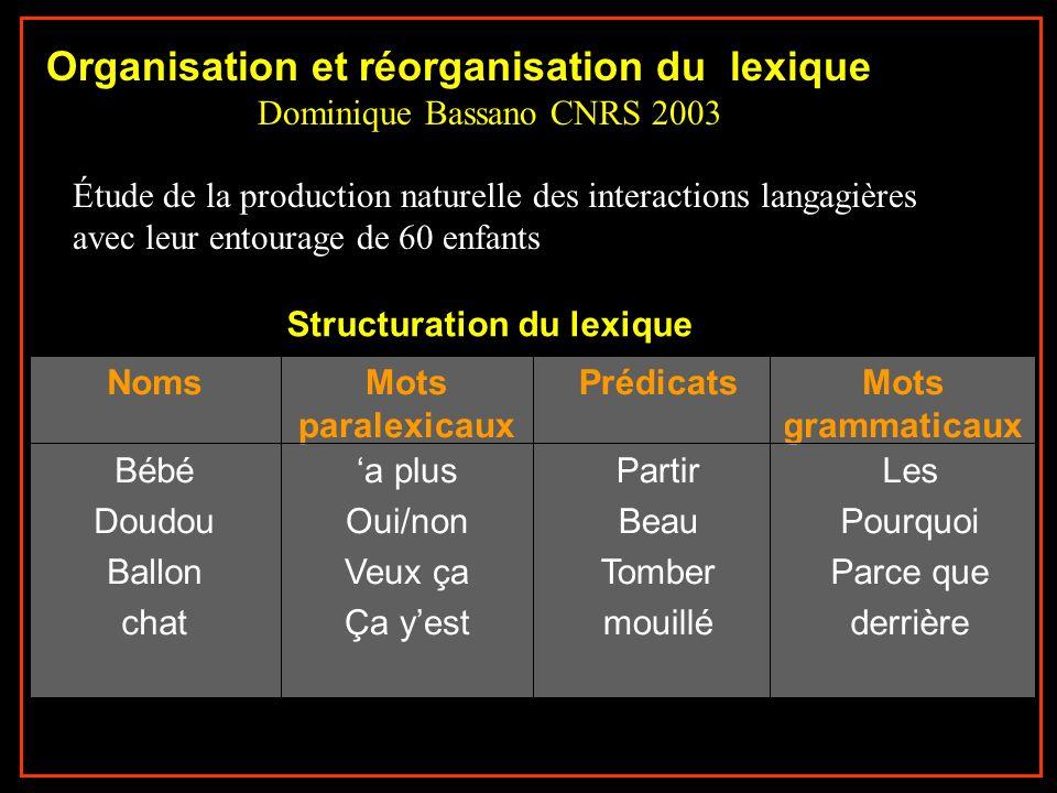 Structuration lexique