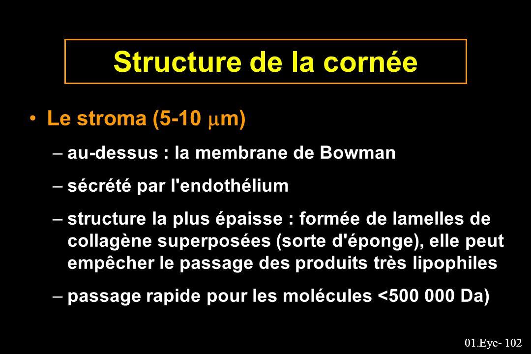 Structure de la cornée Le stroma (5-10 m)