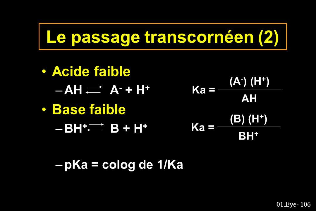 Le passage transcornéen (2)