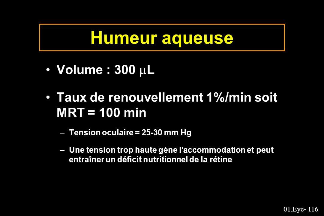 Humeur aqueuse Volume : 300 L