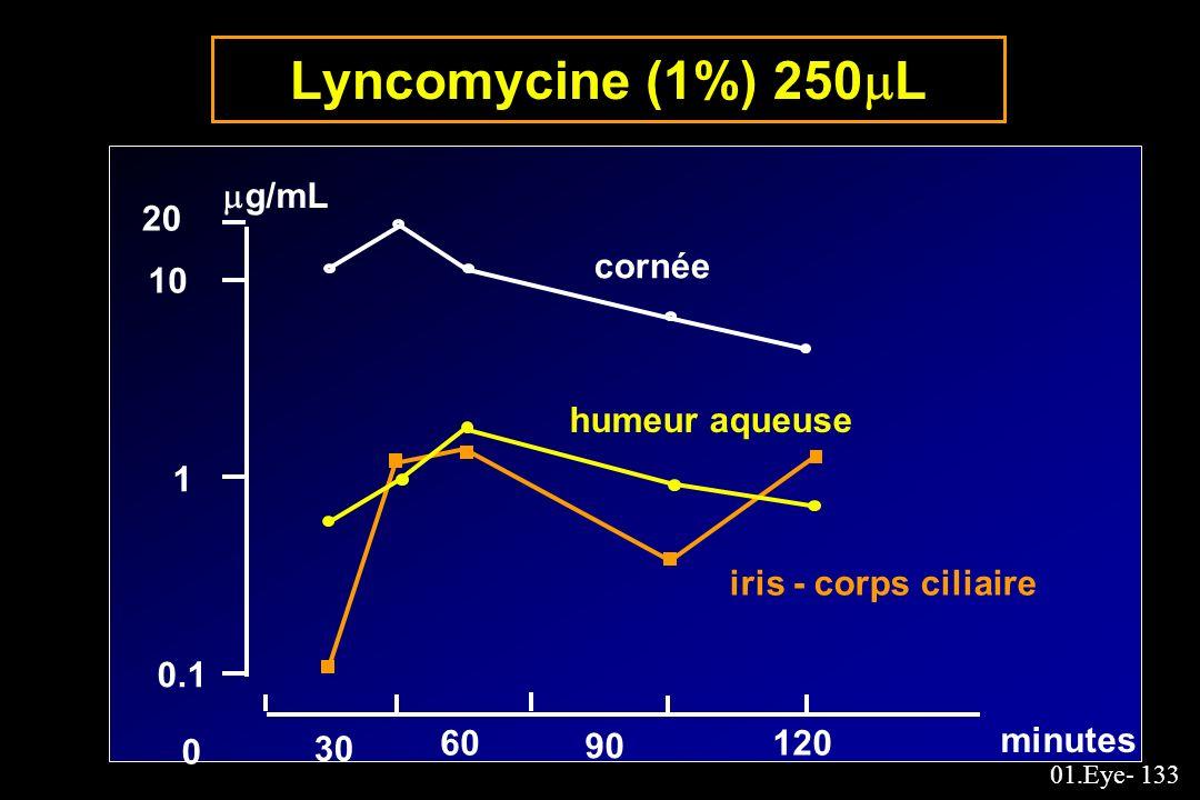 Lyncomycine (1%) 250L g/mL 20 cornée 10 humeur aqueuse 1