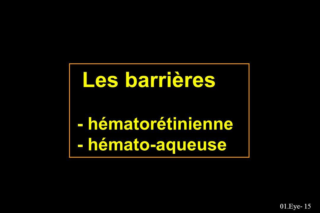 Les barrières - hématorétinienne - hémato-aqueuse