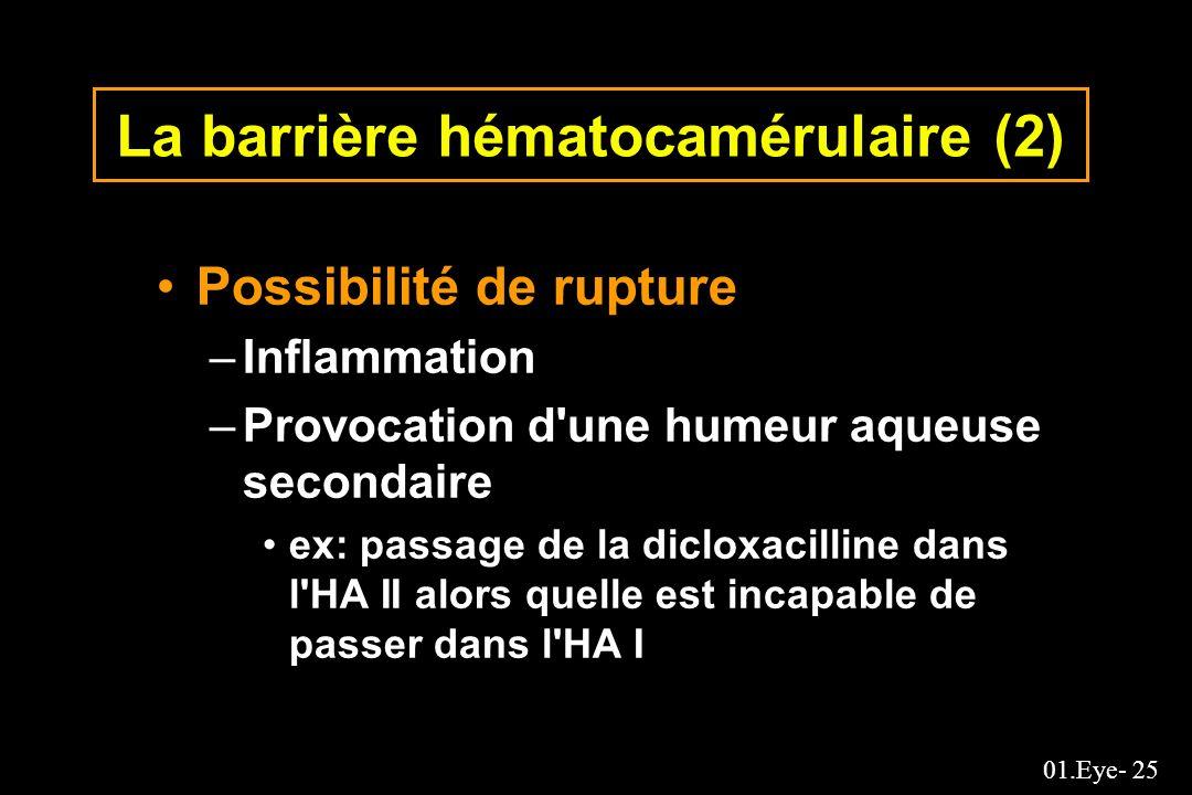 La barrière hématocamérulaire (2)