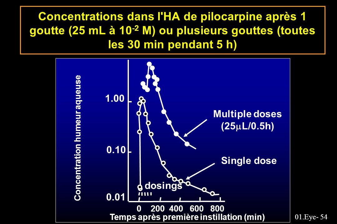 Concentrations dans l HA de pilocarpine après 1 goutte (25 mL à 10-2 M) ou plusieurs gouttes (toutes les 30 min pendant 5 h)