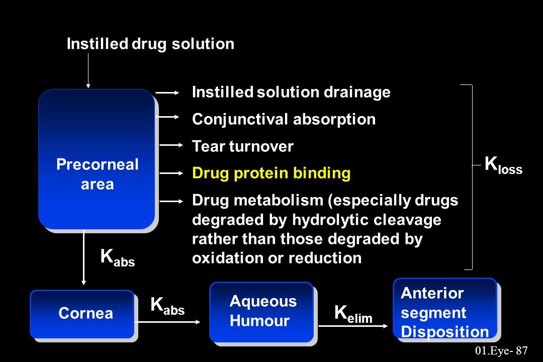 Kloss Kabs Kabs Kelim Instilled drug solution