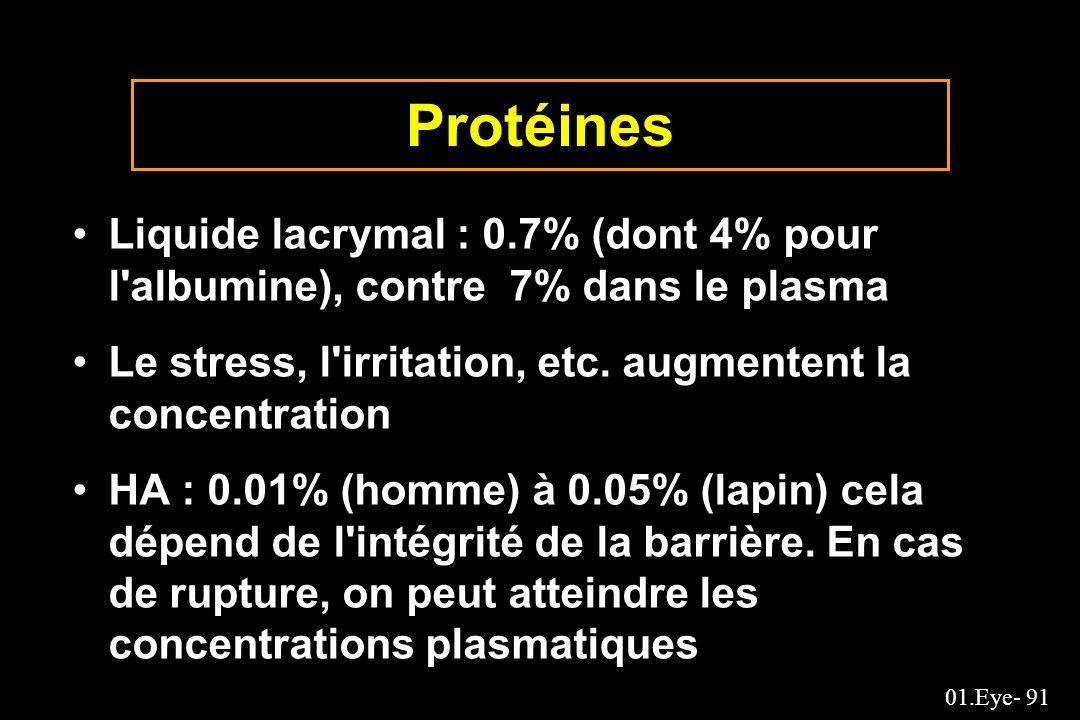 Protéines Liquide lacrymal : 0.7% (dont 4% pour l albumine), contre 7% dans le plasma. Le stress, l irritation, etc. augmentent la concentration.