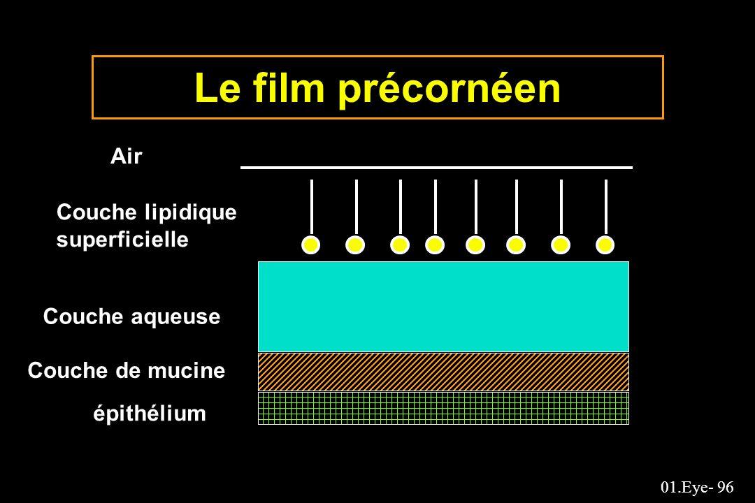 Le film précornéen Air Couche lipidique superficielle Couche aqueuse