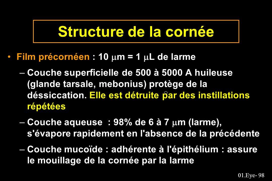Structure de la cornée Film précornéen : 10 m = 1 L de larme