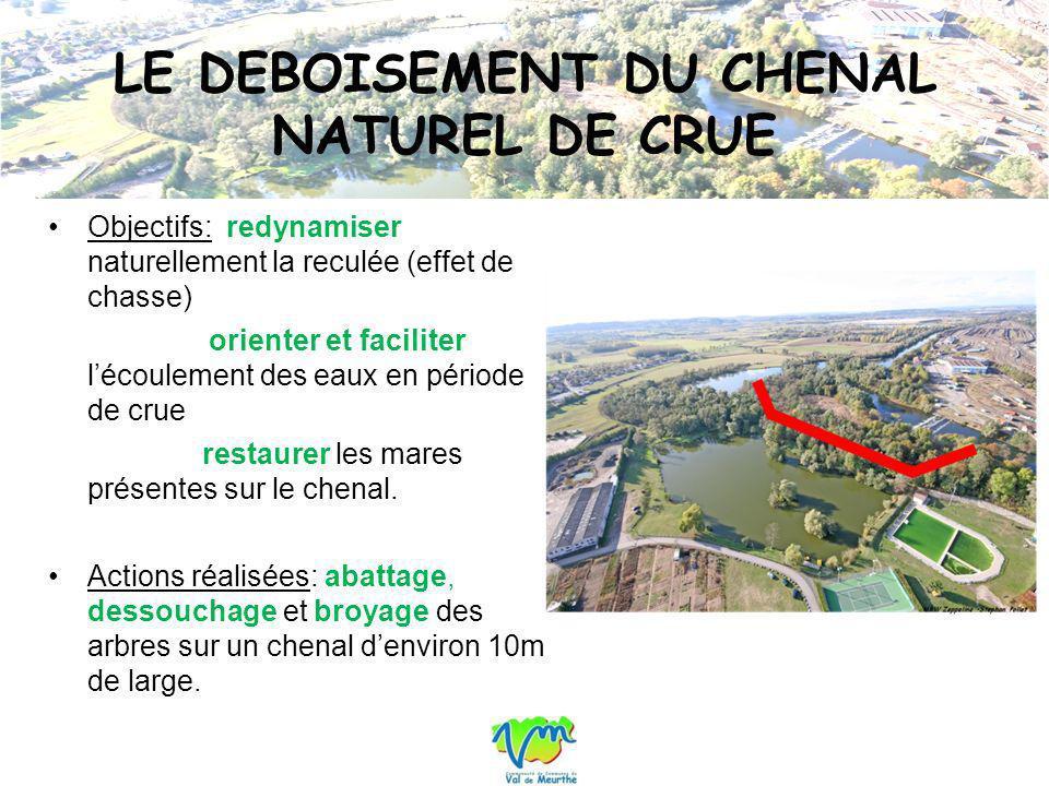 LE DEBOISEMENT DU CHENAL NATUREL DE CRUE