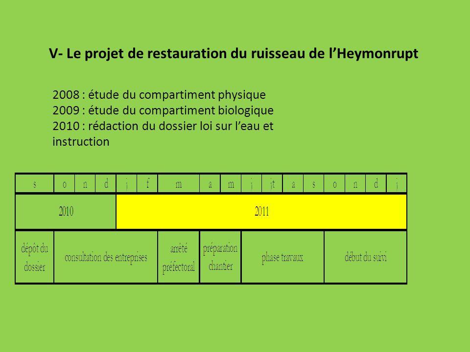 V- Le projet de restauration du ruisseau de l'Heymonrupt