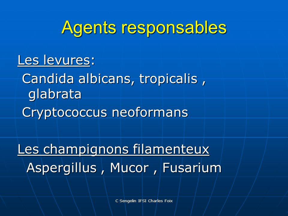 C Sengelin IFSI Charles Foix
