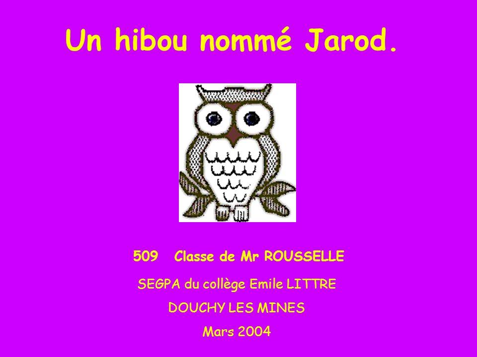 SEGPA du collège Emile LITTRE
