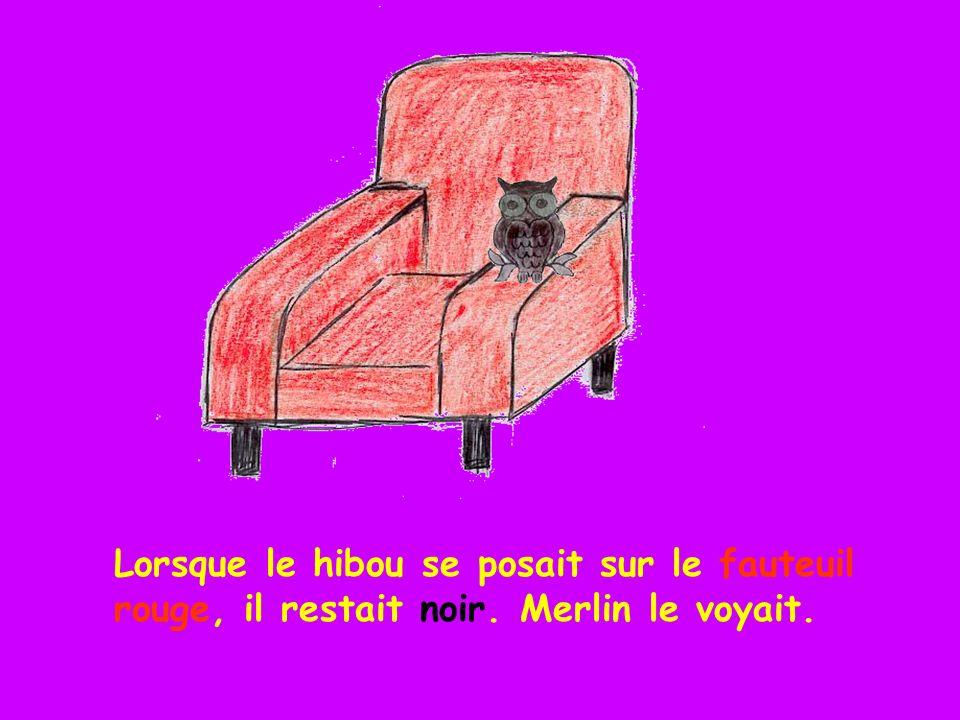 Lorsque le hibou se posait sur le fauteuil rouge, il restait noir