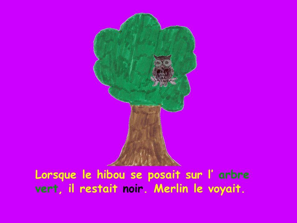 Lorsque le hibou se posait sur l' arbre vert, il restait noir