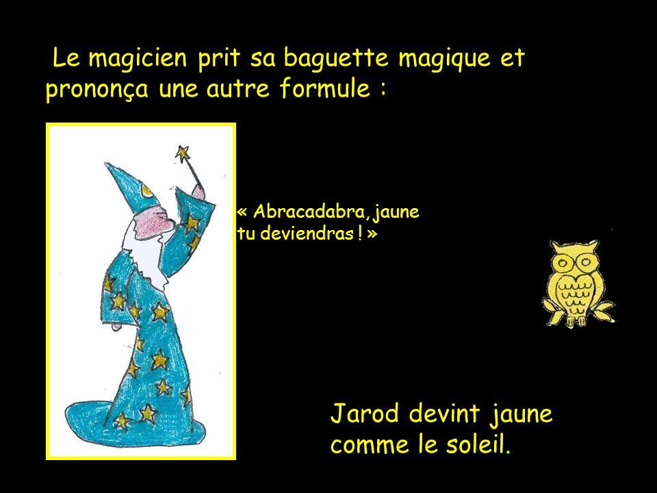 Le magicien prit sa baguette magique et prononça une autre formule :