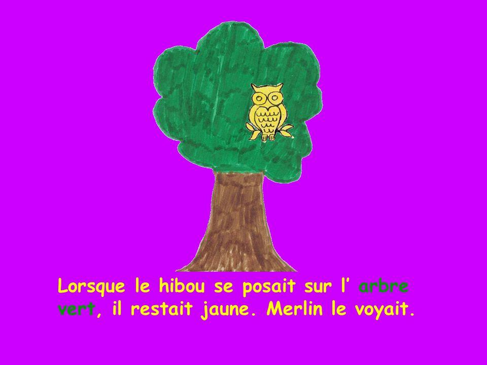 Lorsque le hibou se posait sur l' arbre vert, il restait jaune