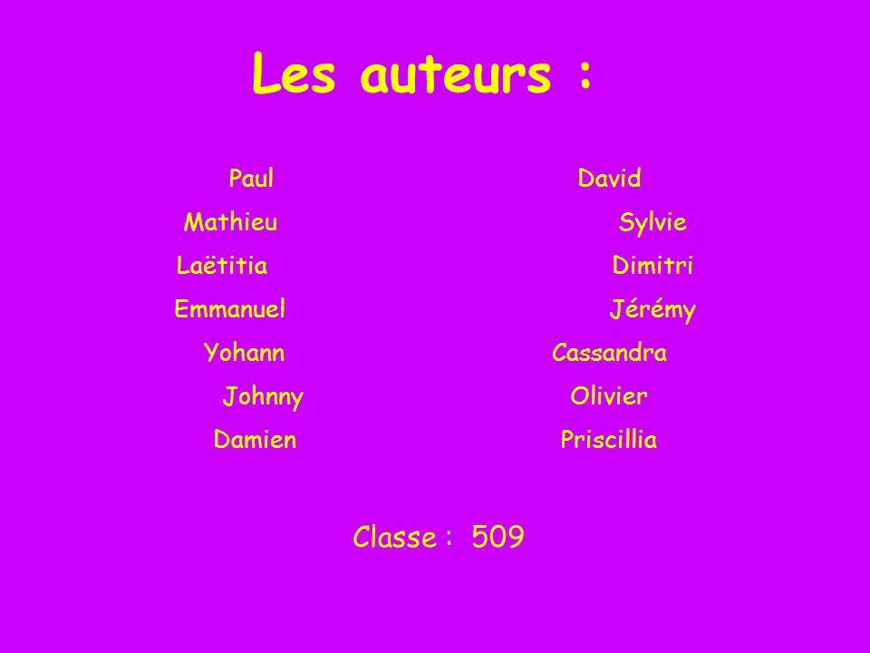 Les auteurs : Classe : 509 Paul David Mathieu Sylvie Laëtitia Dimitri