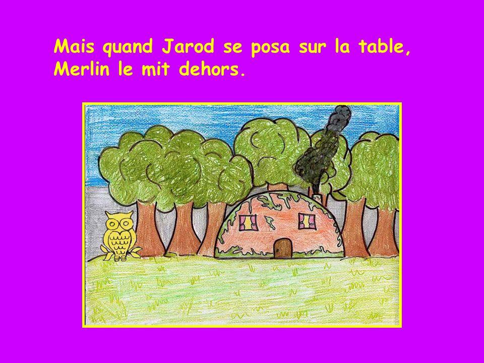 Mais quand Jarod se posa sur la table, Merlin le mit dehors.