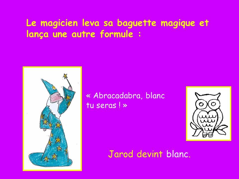 Le magicien leva sa baguette magique et lança une autre formule :