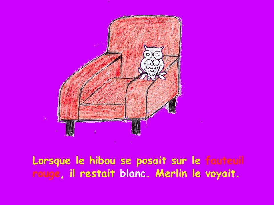 Lorsque le hibou se posait sur le fauteuil rouge, il restait blanc
