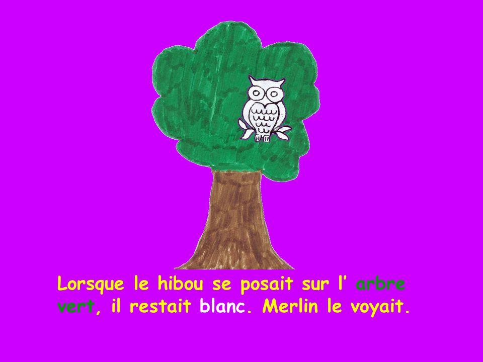 Lorsque le hibou se posait sur l' arbre vert, il restait blanc