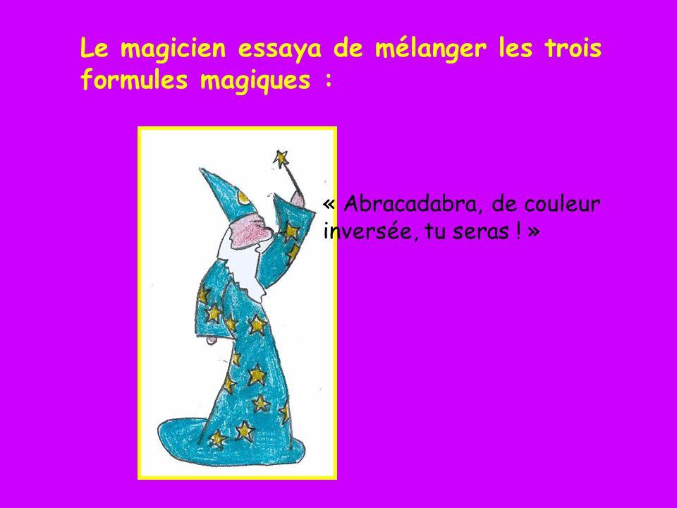 Le magicien essaya de mélanger les trois formules magiques :