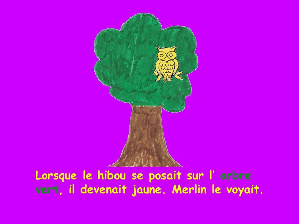 Lorsque le hibou se posait sur l' arbre vert, il devenait jaune